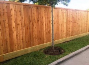 other side of new fence